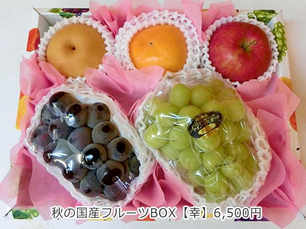 秋の国産フルーツBOX【幸】