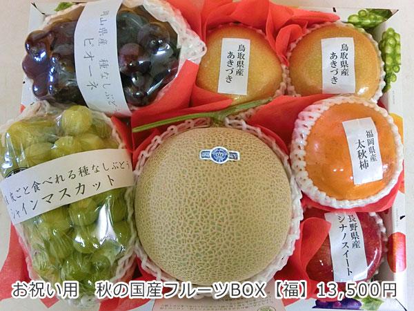 お祝い用 秋の国産フルーツBIX【福】