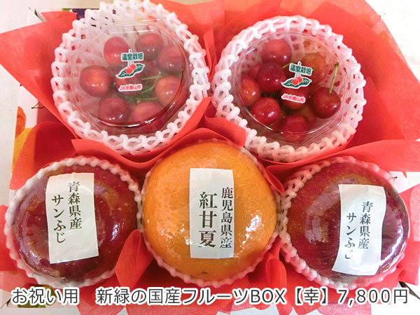 お祝い用 新緑の国産フルーツBOX【幸】