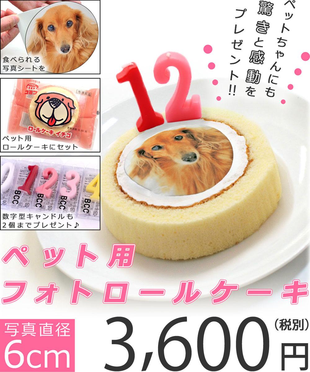ケーキ用デコシート ケーキづくり お菓子作り デコレーション トッピング