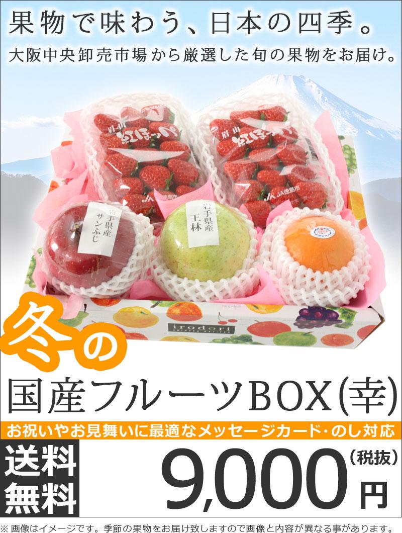 国産フルーツBOX(幸)