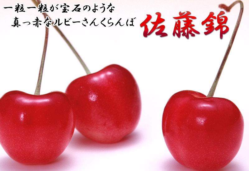山形県佐藤錦さくらんぼ化粧箱