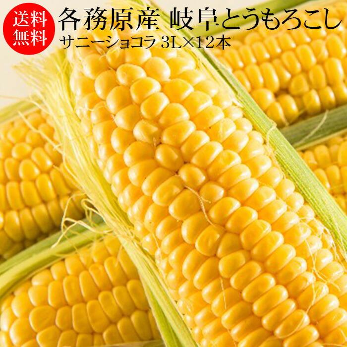 各務原産 岐阜とうもろこし サニーショコラ 3L(約370g)×12本