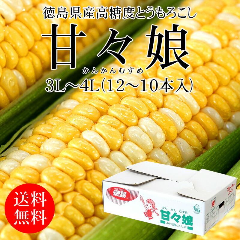 徳島県産 高糖度とうもろこし 甘々娘