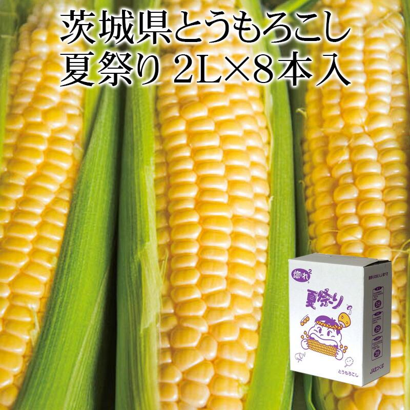 茨城県産とうもろこし 夏祭り2L×8本入 縦入れ箱