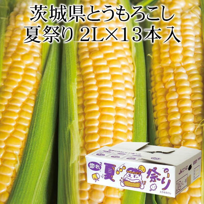 茨城県産 夏祭り2L×13本