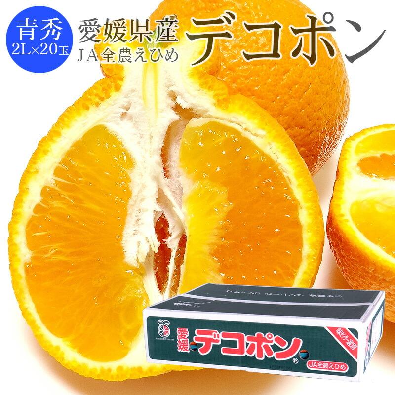愛媛県産デコポン 青秀2L