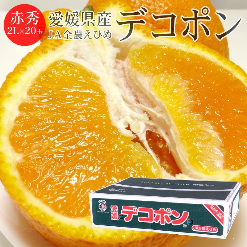 愛媛県産デコポン 赤秀2L