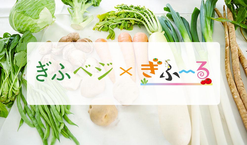 ぎふベジ野菜セット