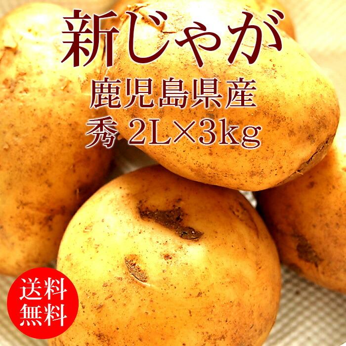 鹿児島県産ニシユタカ