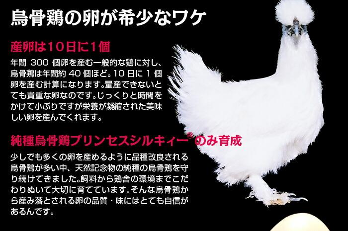 烏骨鶏プリンセスシルキィーの卵です
