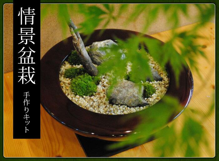 情景盆栽手作りキット