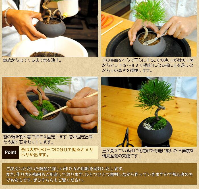 情景盆栽の作り方