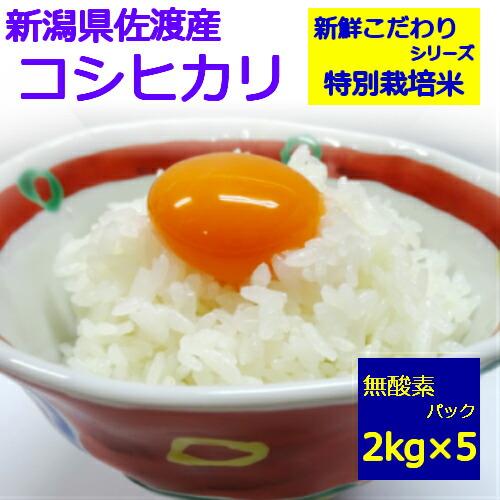 佐渡産 コシヒカリ 2kg×5
