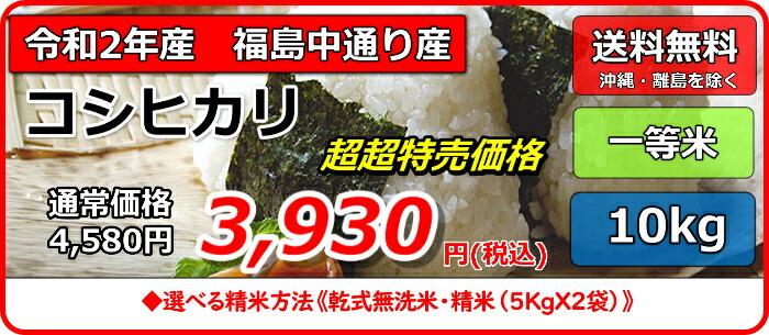 中コシ10m