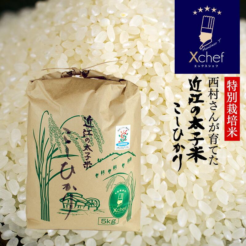 《特別栽培米》おいしい日本のお米 『近江の太子米 こしひかり』 白米5kg