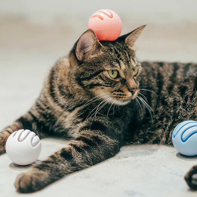 Cat Toy Ball 猫用おもちゃボール