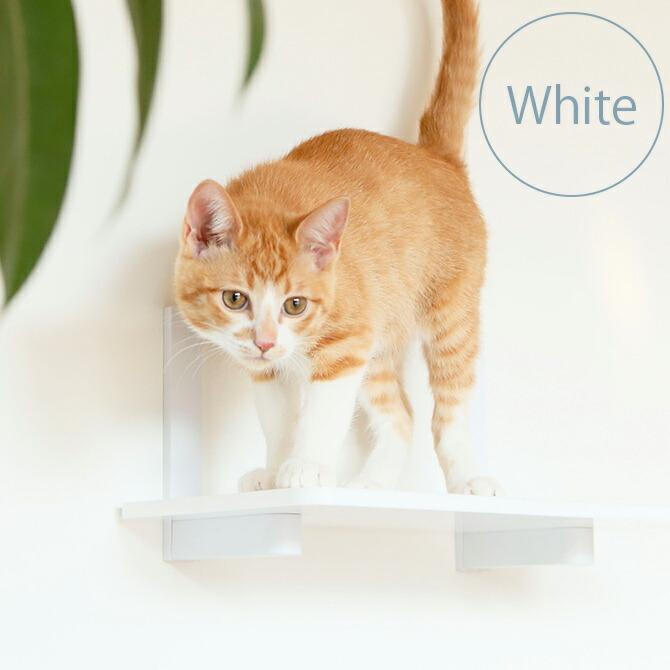 Catroad+  キャットステップ ホワイト
