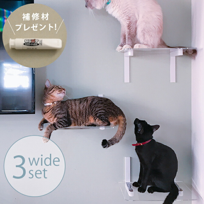 Catroad+ キャット ワイドステップ 3点セット