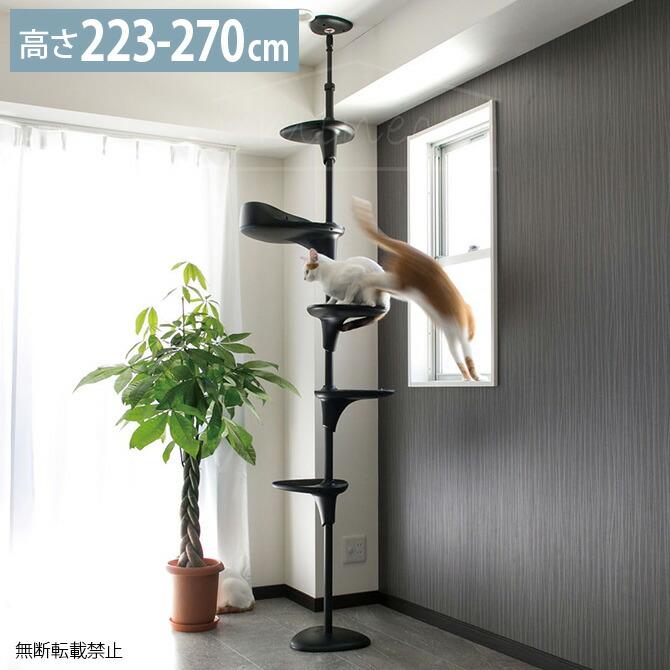 Cat Forest キャットフォレスト ブラック