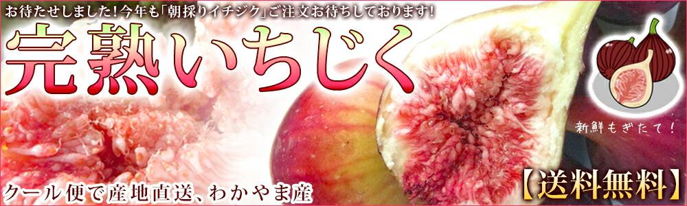 和歌山県産「いちじく」冷凍 産地直送