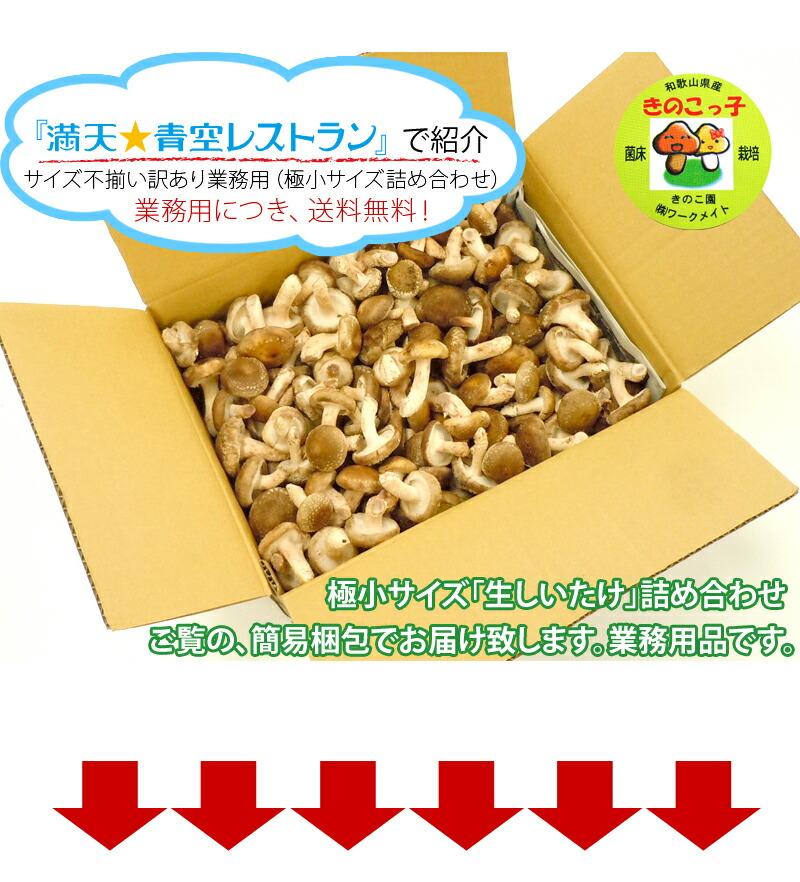 青空レストランで紹介の、規格外サイズの椎茸です。簡易梱包で安くご提供