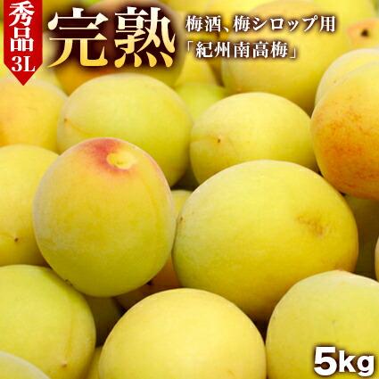 青梅「南高(なんこう)秀品3L」5kg