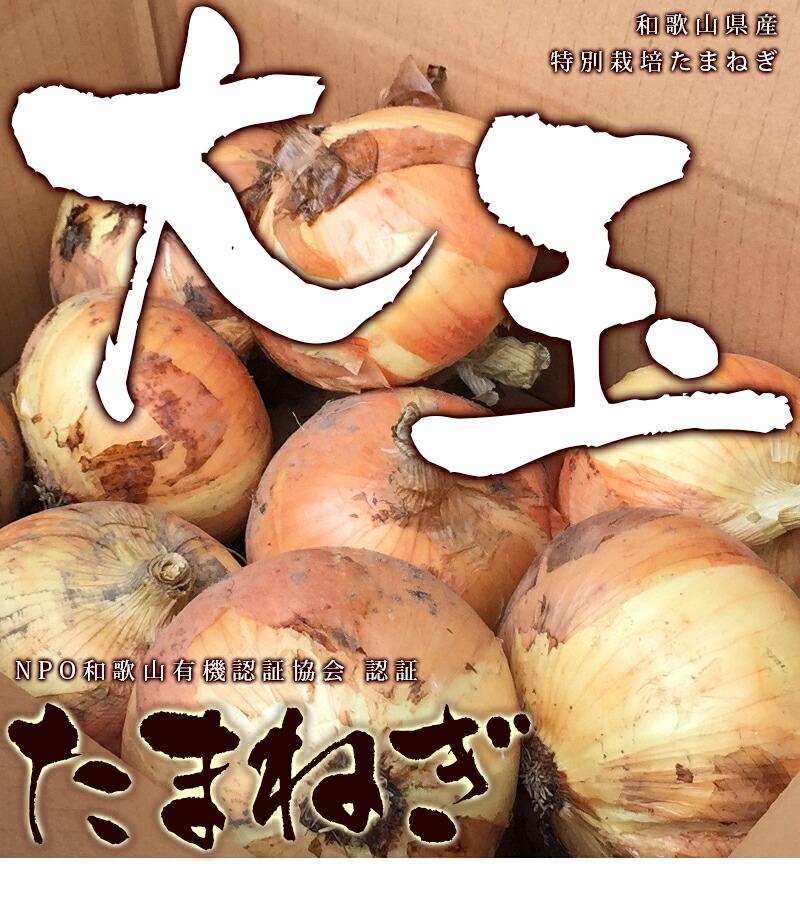 NPO和歌山有機認証協会より認証、特別栽培たまねぎ