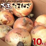 和歌山産 特別栽培たまねぎ 大玉 10kg