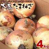 和歌山産 特別栽培たまねぎ 大玉 4kg