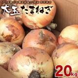 和歌山産 特別栽培たまねぎ 大玉 20kg