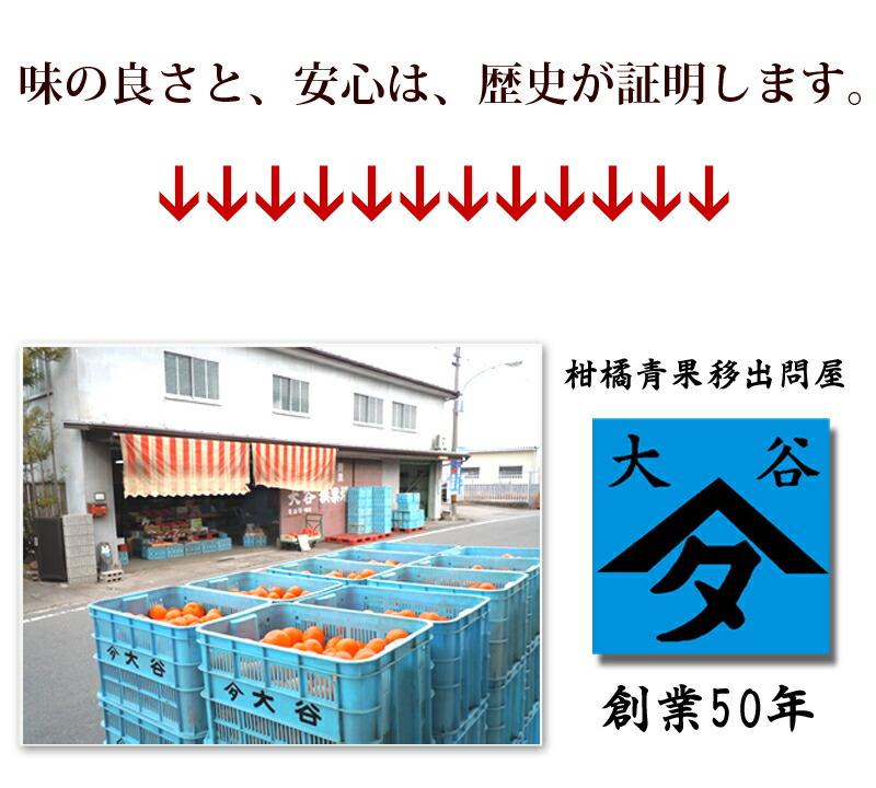 店長の高校の先輩、大谷氏がプロの目利きで商品を産直します
