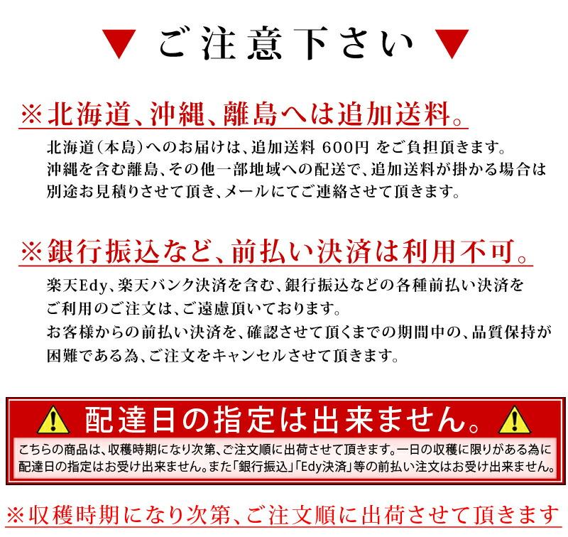 和歌山 名物 名産品 特産 かき 柿 フルーツ カキ