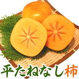和歌山産 平たねなし柿 秀 贈答用 3Lサイズ 12個