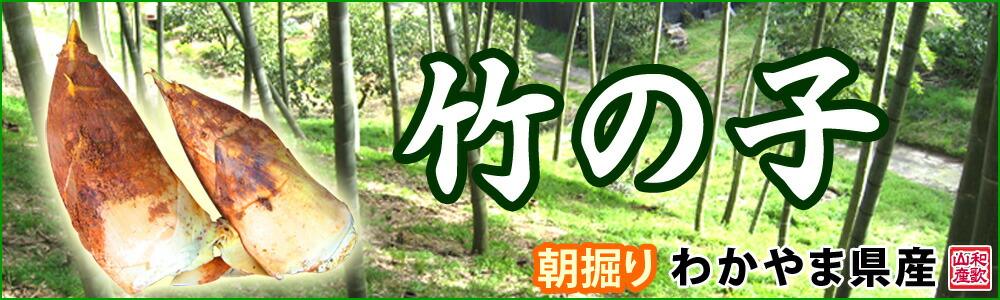 和歌山県産「竹の子」産地直送