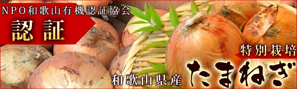 和歌山県産「特別栽培」玉ねぎ 産地直送 タマネギ
