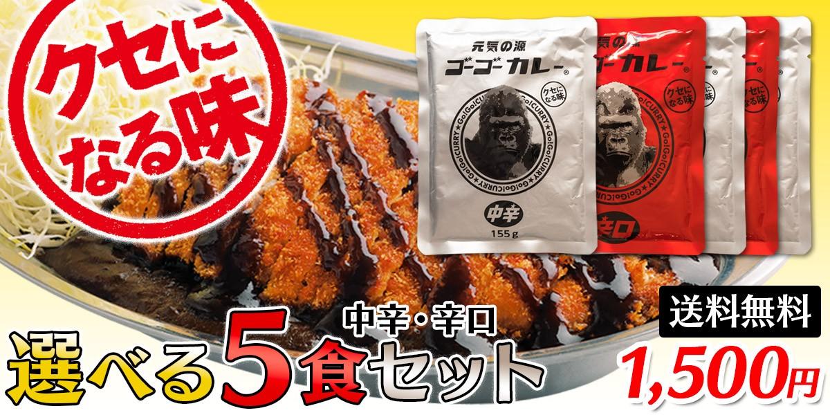 [送料無料] ゴーゴーカレー 選べる5食セット