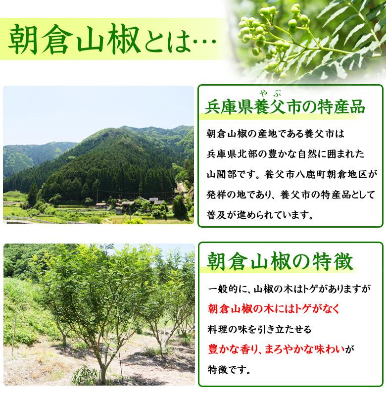 朝倉山椒1