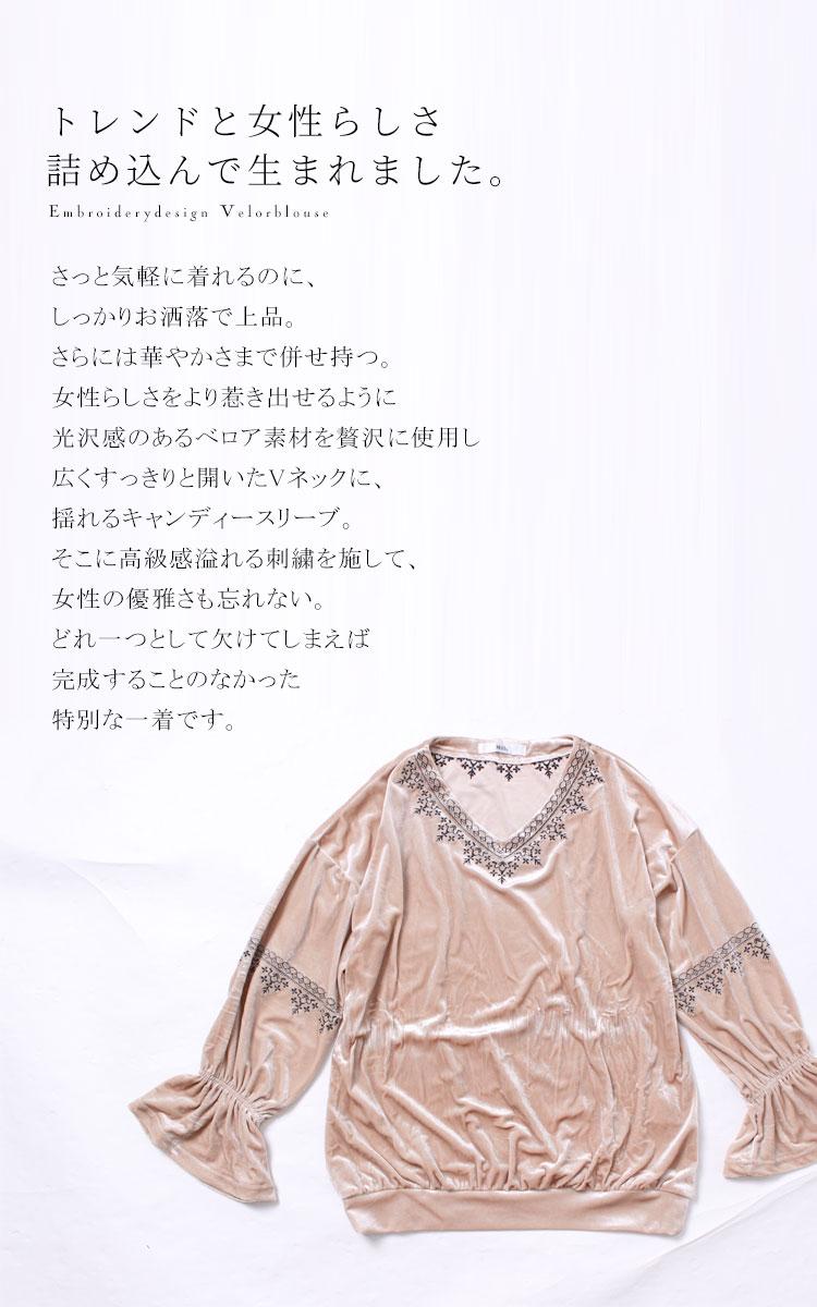 刺繍ネックベロアブラウス