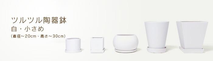 ツルツル陶器鉢【白】
