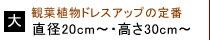 大(直径20cm〜・高さ30cm〜)