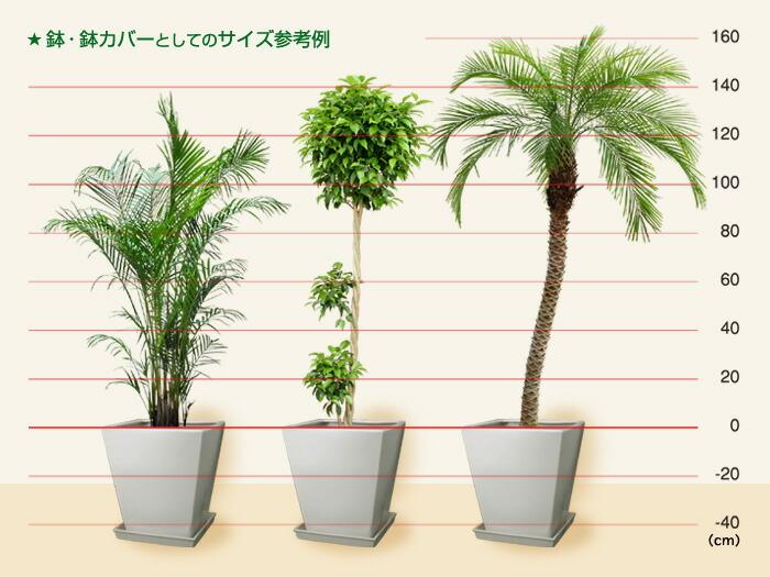 植木鉢・鉢カバーの使用例