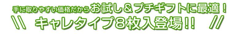 キャレタイプ8枚入登場!!