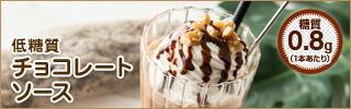 ホットチョコレート チョコレートソース ショコラショー チョコレートドリンク