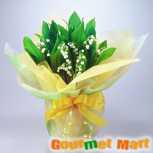 【フラワーギフト】すずらん鉢植え4.5号鉢8本植え(鉢花)北海道産の可愛い鈴蘭(スズラン)をラッピングしてお届けいたします!