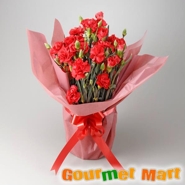 【母の日ギフト】カーネーション5号鉢植え(鉢花)母の日定番の赤いお花をラッピングしてお届けいたします!