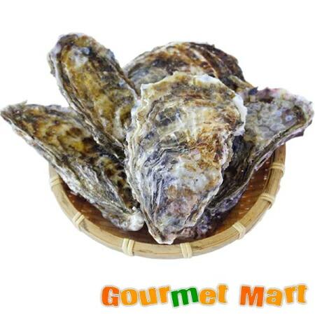 マルえもん[Lサイズ]10個セット 北海道厚岸産 牡蠣 殻付き 生食 お取り寄せ