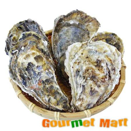 カキえもん[Lサイズ]10個セット 北海道厚岸産 牡蠣 殻付き 生食 お取り寄せ