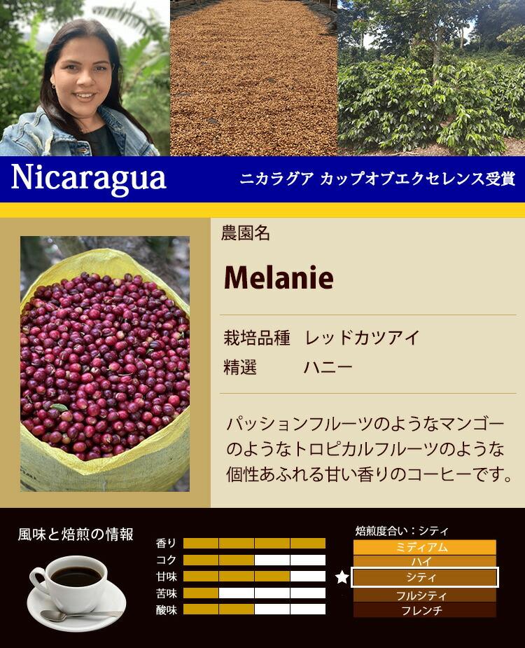 ニカラグア・カップオブエクセレンス受賞珈琲豆
