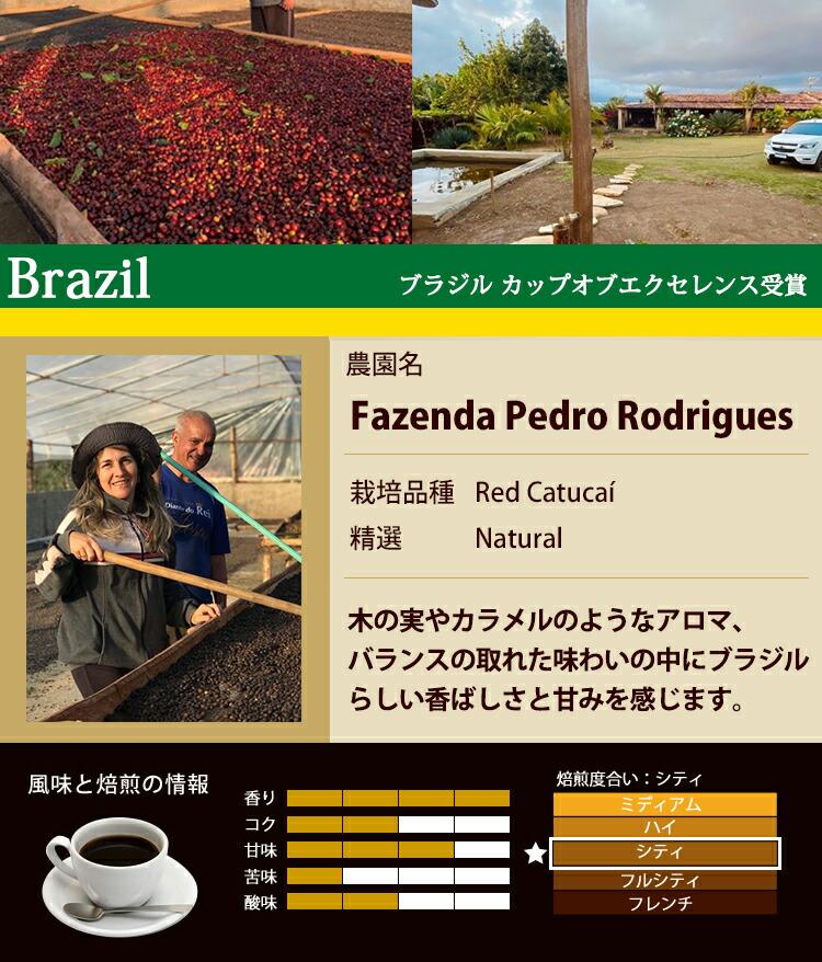 ブラジル カップオブエクセレンス受賞珈琲豆